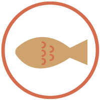 Website_Icons_Fish_USA